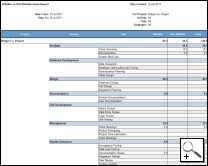 A Billable vs. Non-Billable report for the Widget Co. Project